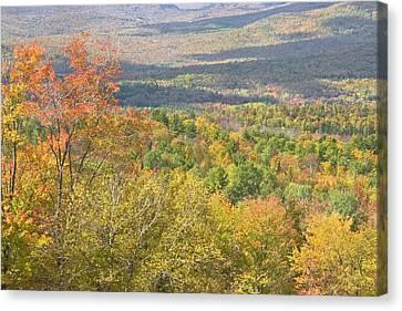 Maine Mountains Canvas Print - Autumn Landscape Mount Blue State Park Weld Maine by Keith Webber Jr