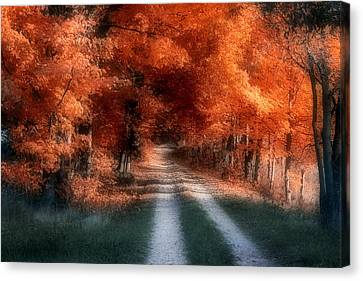 Autumn Lane Canvas Print by Tom Mc Nemar