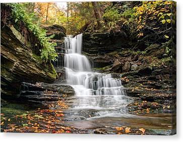 Autumn Leaves Below The Nameless Hidden Waterfall Canvas Print by Gene Walls