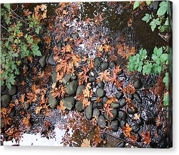 Autumn Leaves Canvas Print by George Cousins