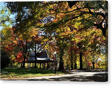 Autumn Leaves In Prospect Park Canvas Print by Diane Lent
