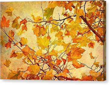 Autumn Leaves With Texture Effect Canvas Print by Natalie Kinnear