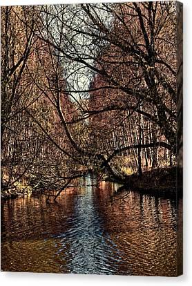 Autumn Light By Leif Sohlman Canvas Print by Leif Sohlman