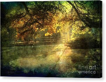 Autumn Light Canvas Print by Ellen Cotton