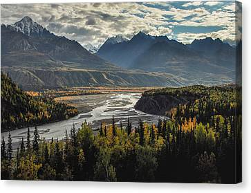 Autumn Light Canvas Print by Roger Clifford