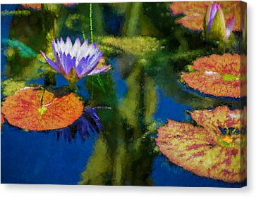 Autumn Lily Pad Impressions Canvas Print by Georgia Mizuleva