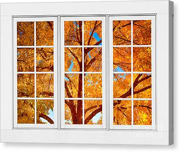 Autumn Maple Tree View Through A White Picture Window Frame Canvas Print