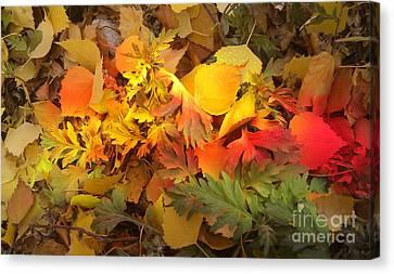 Autumn Masquerade Canvas Print