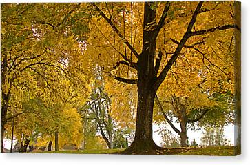Autumn Memories Canvas Print by Beverly Guilliams