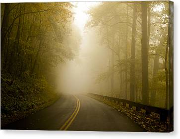 Autumn Mist Blue Ridge Parkway Canvas Print by Terry DeLuco