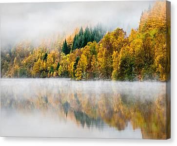 Autumn Mist Canvas Print by Dave Bowman