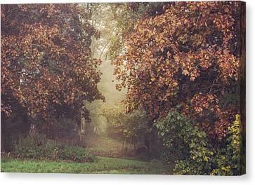 Autumn Mist In A Woodland Glade Canvas Print by Chris Fletcher