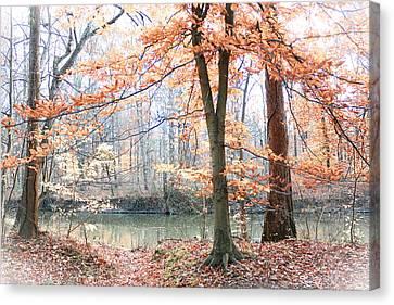 Autumn Mist Canvas Print by Lorna Rogers Photography
