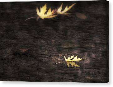 Canvas Print featuring the photograph Autumn Mood - Fall - Leaves by Jason Politte