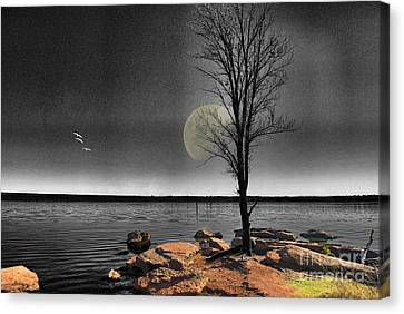 Autumn Moon Canvas Print by Betty LaRue