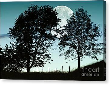 Autumn Moon Rise Canvas Print by Sabine Jacobs