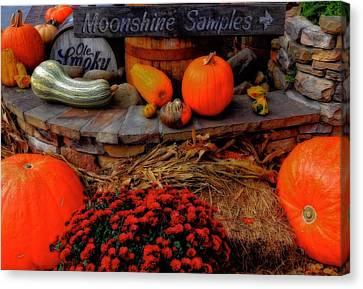 Autumn Moonshine At Old Smoky Distillery Canvas Print by Dan Sproul