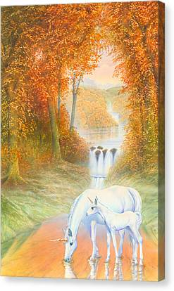 Autumn Morning Canvas Print by Andrew Farley