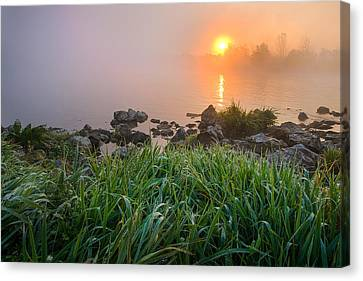 Autumn Morning II Canvas Print by Davorin Mance