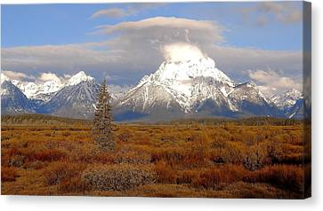 Autumn Morning In The Tetons Canvas Print