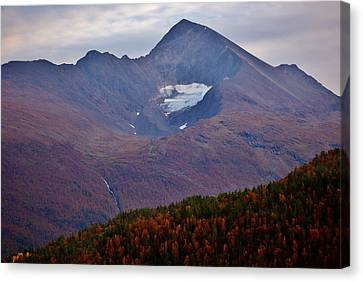 Autumn Mountain Glow Canvas Print by David Broome