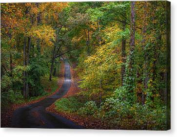 Autumn Mountain Road Canvas Print by William Schmid