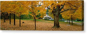 Autumn, Muskoka, Canada Canvas Print by Panoramic Images