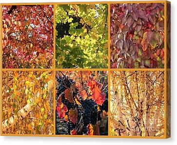 Autumn Nature Collage Canvas Print by Carol Groenen