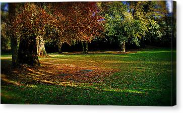 Autumn Canvas Print by Nina Ficur Feenan