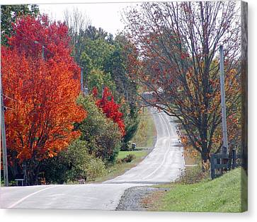 Autumn On A Country Road Canvas Print
