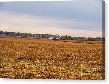 Autumn On An Indiana Farm Canvas Print by Mary Carol Story