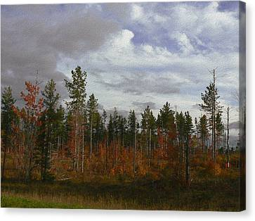 Autumn On Forest Edge Canvas Print