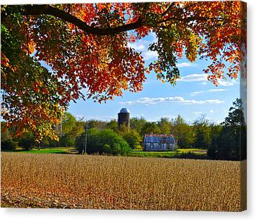 Autumn On The Farm Canvas Print
