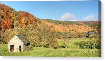 Autumn On The Hillside Canvas Print by David Birchall