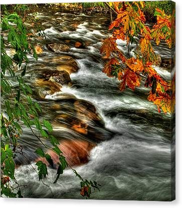 Autumn On The River Canvas Print by Randy Hall