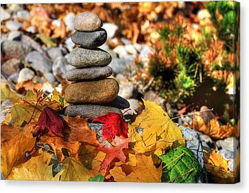 Canon 7d Canvas Print - Autumn On The Rocks by Donna Kennedy