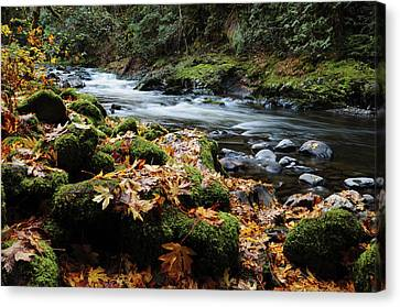 Autumn On The Salmon River, Welches Canvas Print by Michel Hersen