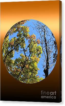 Autumn Opens Up Canvas Print by Rick Rauzi