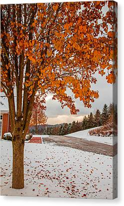 Autumn Or Winter Canvas Print