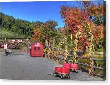 Autumn Orchard Canvas Print by Joann Vitali