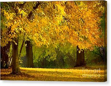 Autumn Park Graphical Canvas Print by Lutz Baar