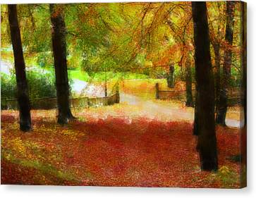 Autumn Park With Trees Of Beech Canvas Print by Tommytechno Sweden