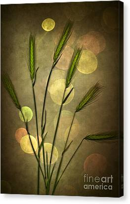 Autumn Party Canvas Print by Jan Bickerton