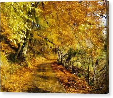 Dale Jackson Canvas Print - Autumn Path by Dale Jackson