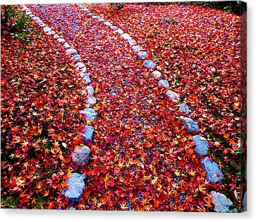 Canvas Print featuring the photograph Autumn Path by Julia Ivanovna Willhite
