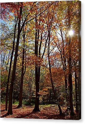 Canvas Print featuring the photograph Autumn Picnic by Debbie Oppermann