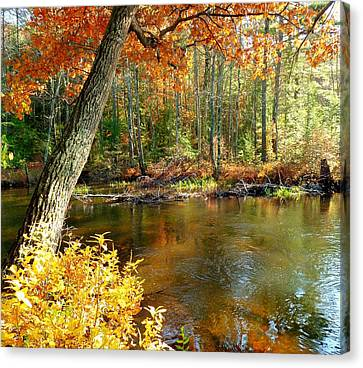 Canvas Print featuring the photograph Autumn Pond by Elaine Franklin