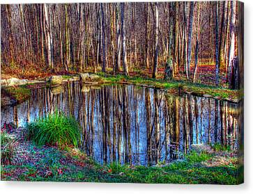 Autumn Pond Reflections Canvas Print by Andy Lawless