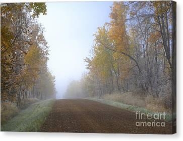 Autumn Prairie Roads Canvas Print