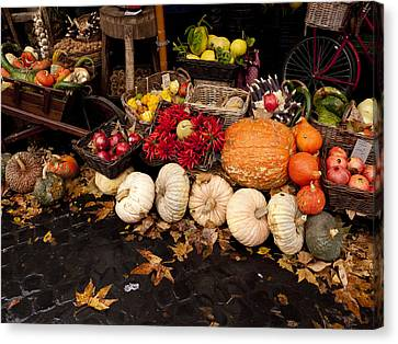 Autumn Produce Canvas Print by Rae Tucker